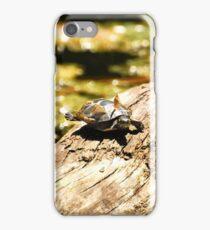 Cute Little Turtle  iPhone Case/Skin