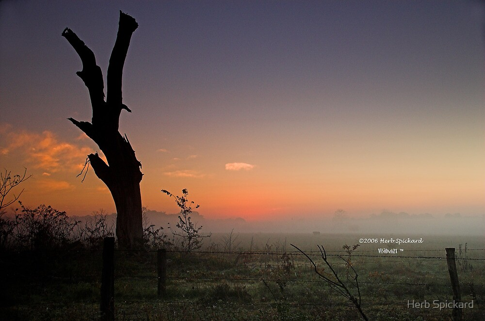 Silhouette at Dawn by Herb Spickard
