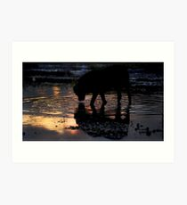 A drink at sunset Art Print