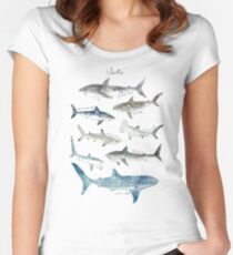 Sharks - Landscape Format Women's Fitted Scoop T-Shirt