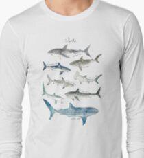 Camiseta de manga larga Tiburones - Formato del paisaje