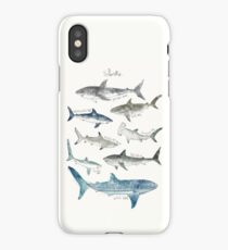 Sharks - Landscape Format iPhone Case/Skin