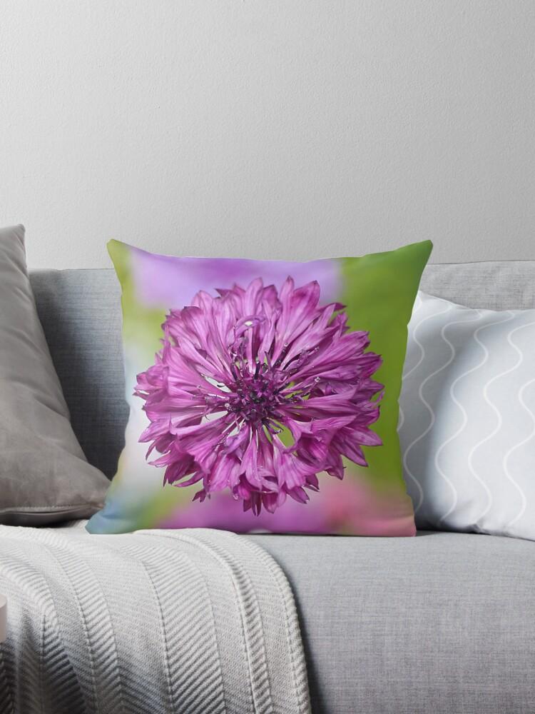 Purple Cornflower Pillow by relayer51