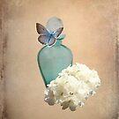 Blue bottle by shalisa