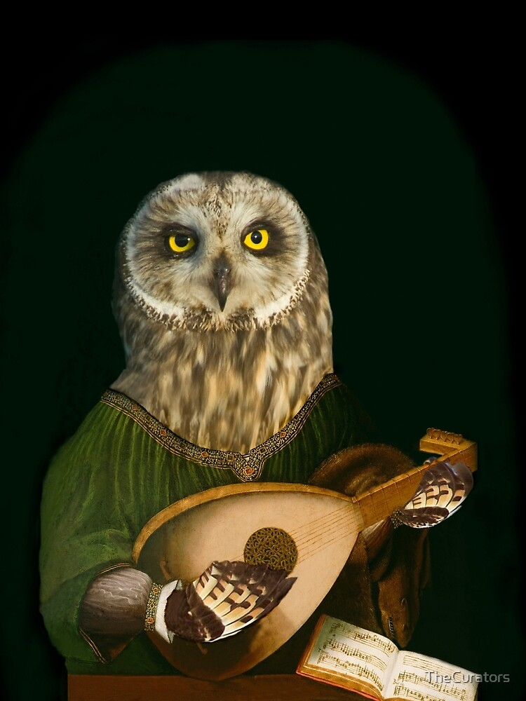 Owl Playing the Lute - Composite Painting by TheCurators
