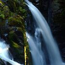Sol Duc Falls ~ Olympic National Park by Elaine Bawden