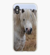 Inquisitive 2 iPhone Case