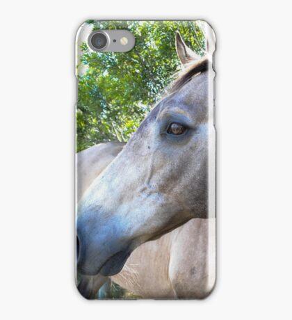 SandMan-The Horse  iPhone Case/Skin
