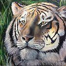 Tiger Tiger by Kyra C. Kalageorgi