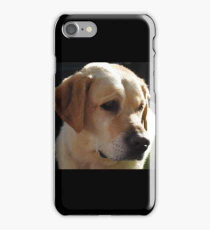 Bouncer The Labrador Puppy  iPhone Case/Skin