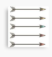 Arrows. Canvas Print
