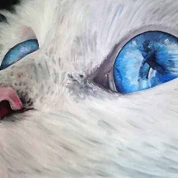 Blue eyed cat by RubenMeer
