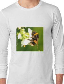 Bee In Peebles Garden Long Sleeve T-Shirt
