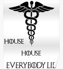 House House- Everybody lies Poster