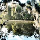 Born On A Bayou by Noble Upchurch