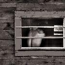 Monochrome Torso in a Window by Wayne King