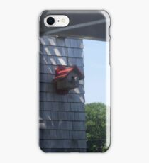 Waterfront Birdhouse iPhone Case/Skin