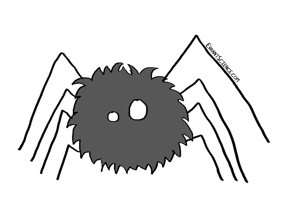 Just a spider by ErrantScience