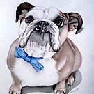 Bulldog by AlanZinn