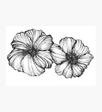 Floral Ink II Photographic Print
