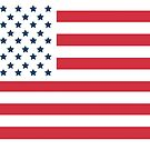 Reverse Reverse American Flag by storecee