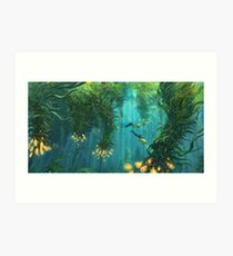 Exploring the Kelp Forest Art Print
