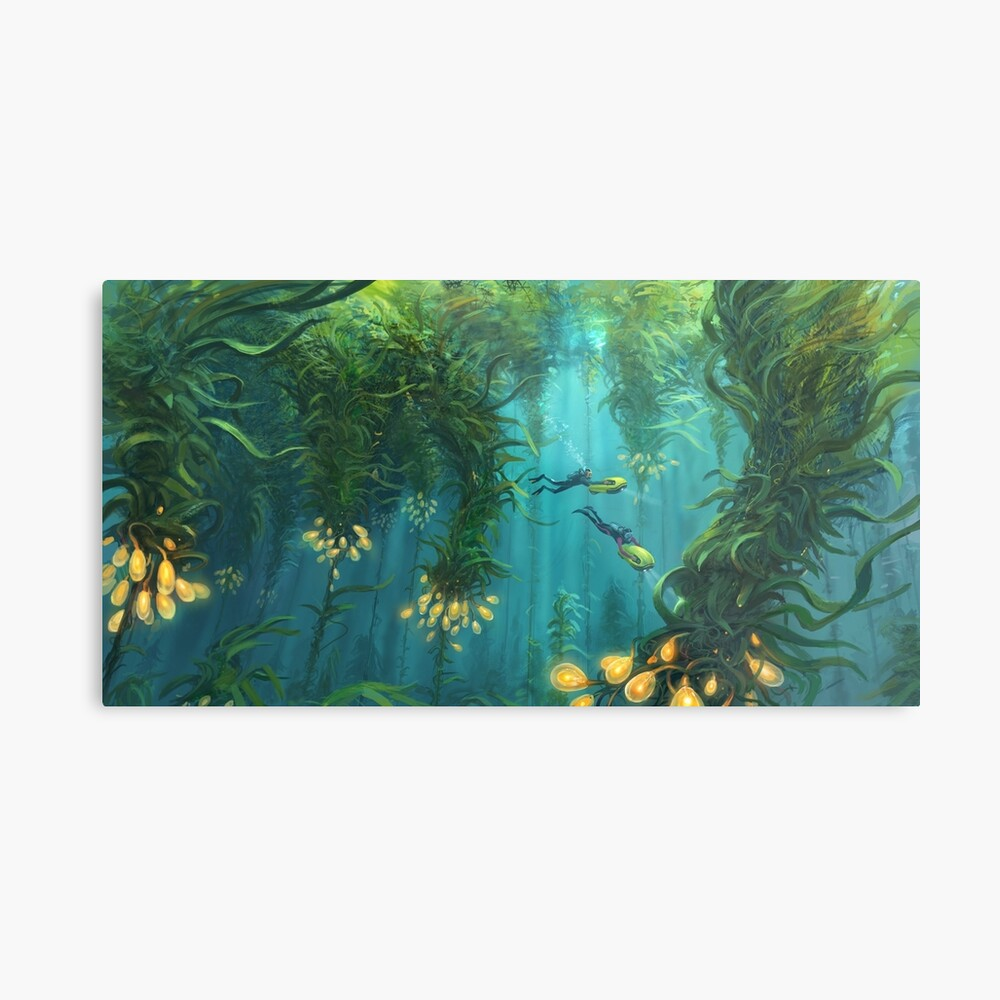 Exploring the Kelp Forest Metal Print