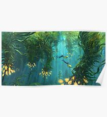 Exploring the Kelp Forest Poster