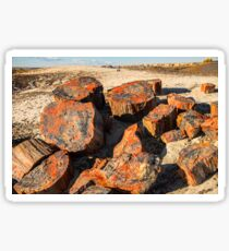 USA. Arizona. Petrified Forest National Park. Sticker