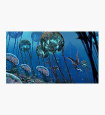 Lámina fotográfica Los grandes arrecifes