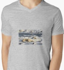 Polar Bear Mother & Cub Grooming  T-Shirt
