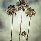 Tropic Storm by RichCaspian