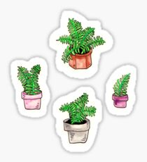 watercolor potted ferns Sticker