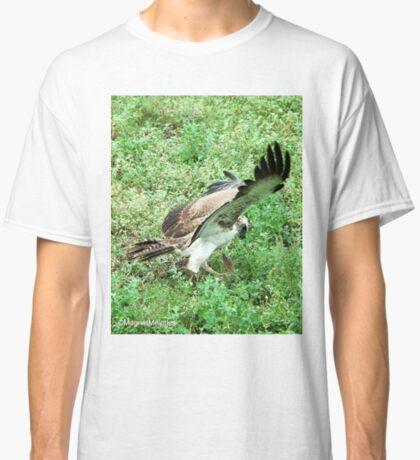 THE CATCH - MARTIAL EAGLE-Polematus bellicosus Classic T-Shirt