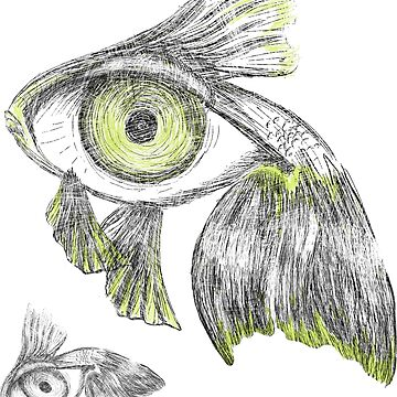 Fisheye by falanfelan