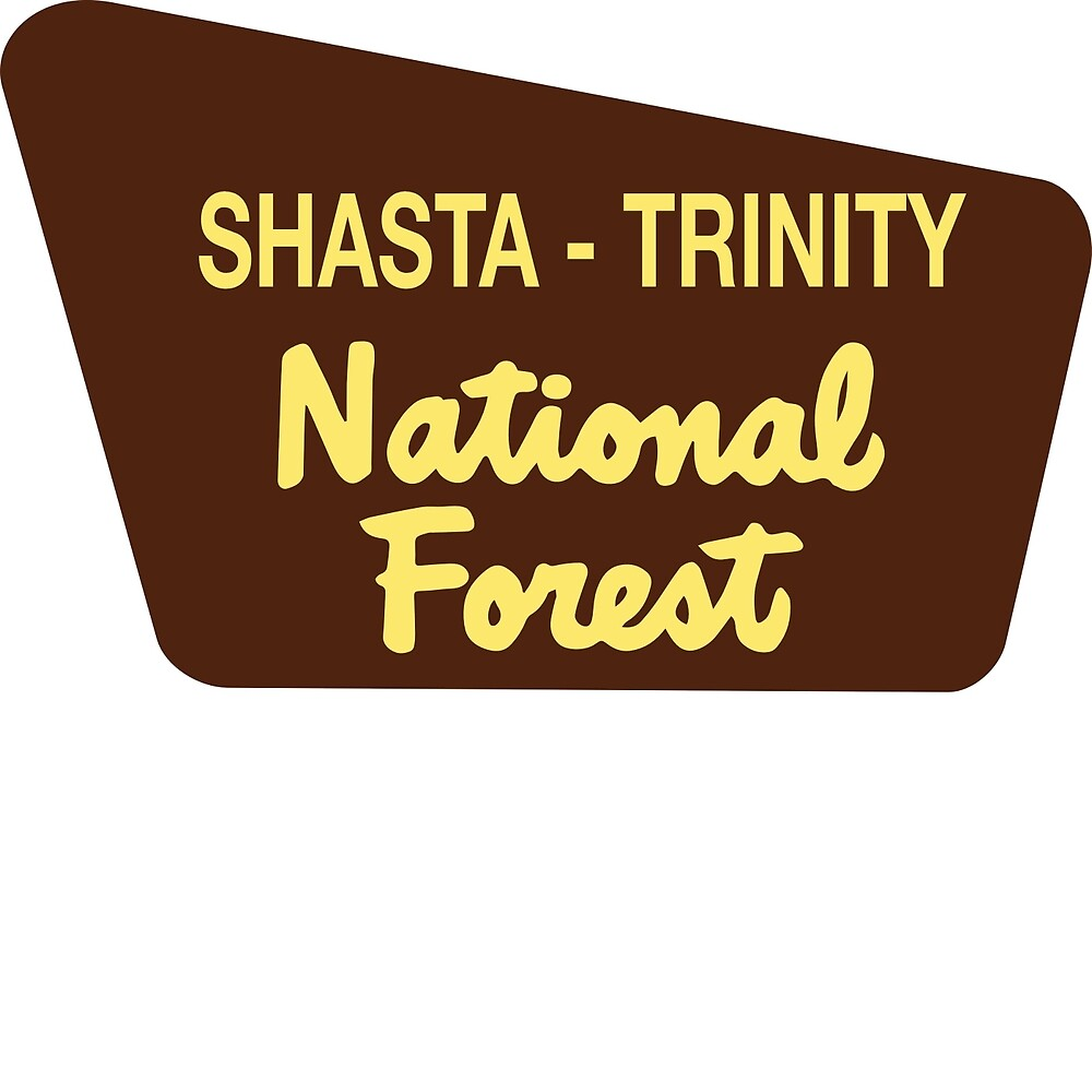 Shasta - Trinity National Forest by Nyle Buss
