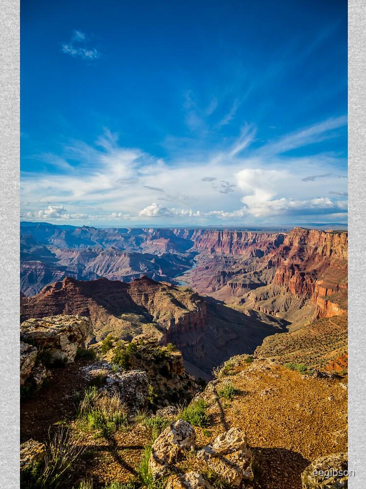 Grand Canyon - Navajo Point View Colorado River by eegibson
