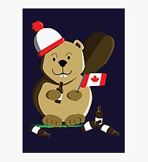Canadian Beaver Photographic Print