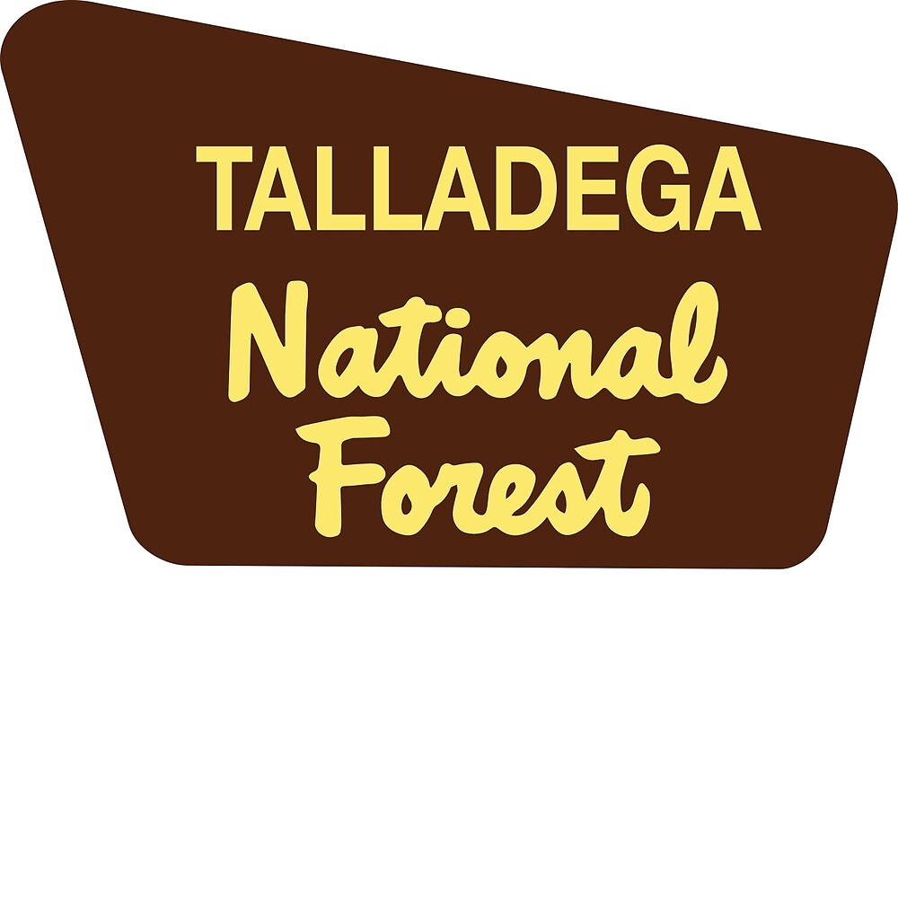 Talladega National Forest by Nyle Buss