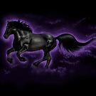 Black Percheron by Rose Gerard