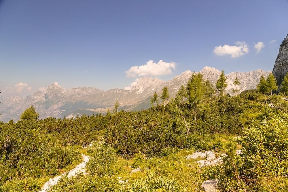 mountain peak in a summer day by zakaz86