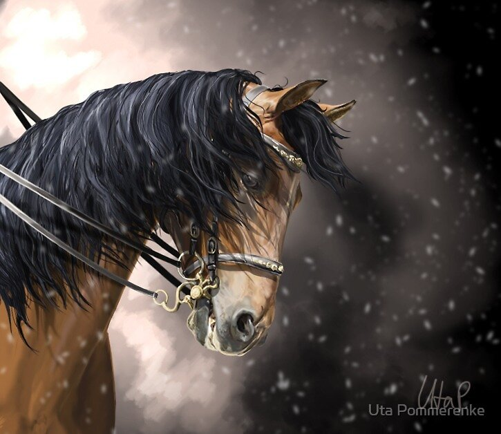 Horse in snow by SeraphimCrystal