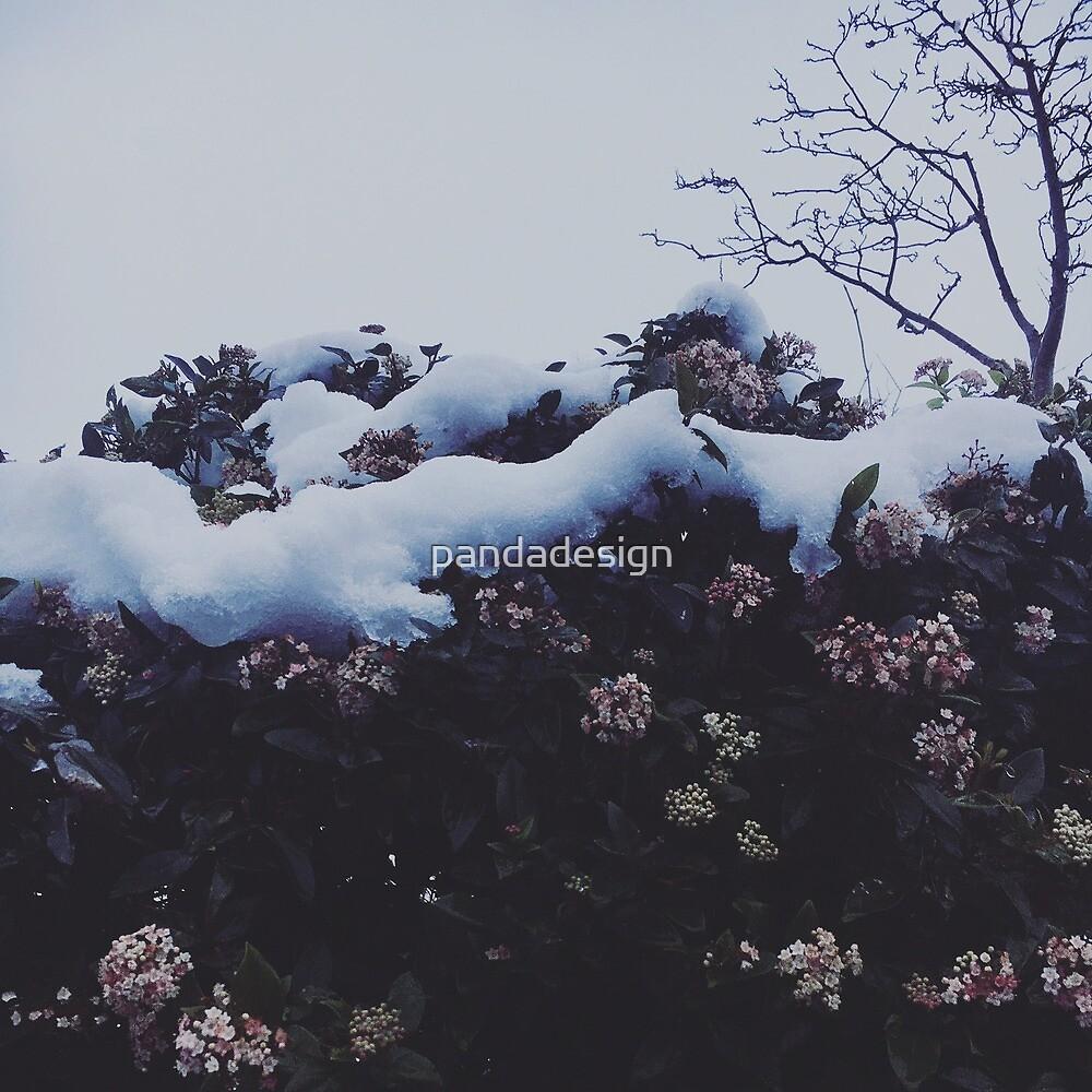 Winter Wonderland by pandadesign