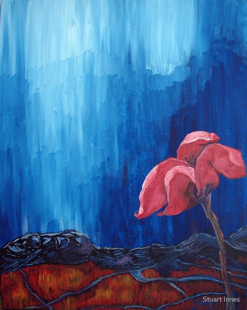 The Red Flower by Stuart Innes