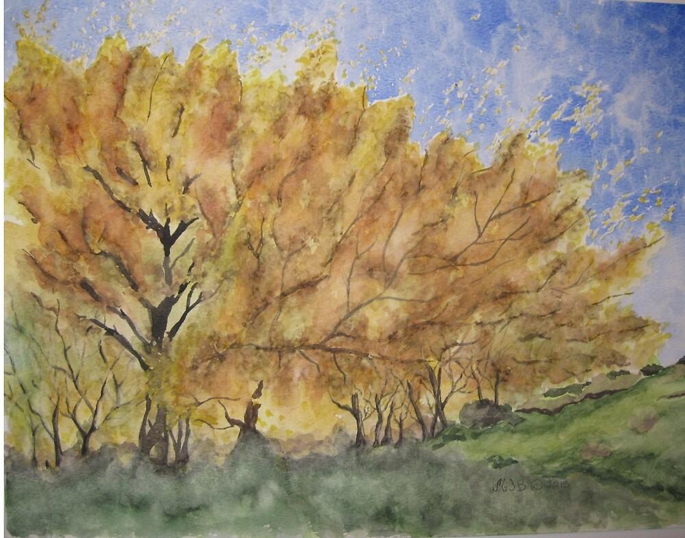 Acacia Trees by mjbarnett