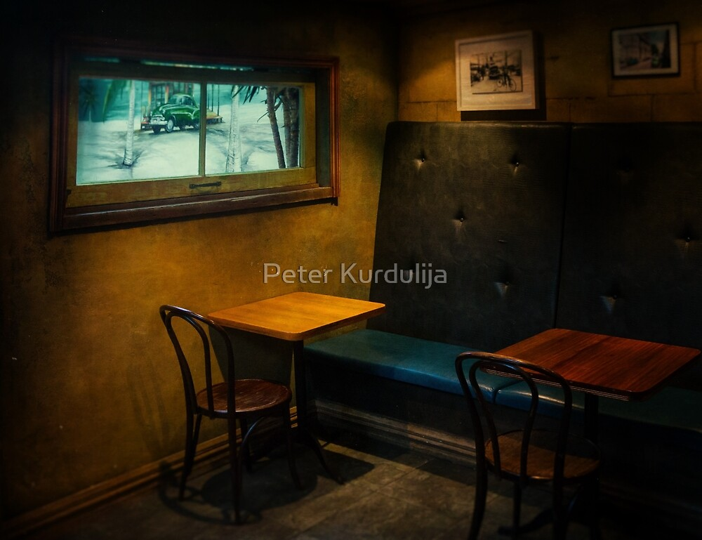 Safe Seat  by Peter Kurdulija