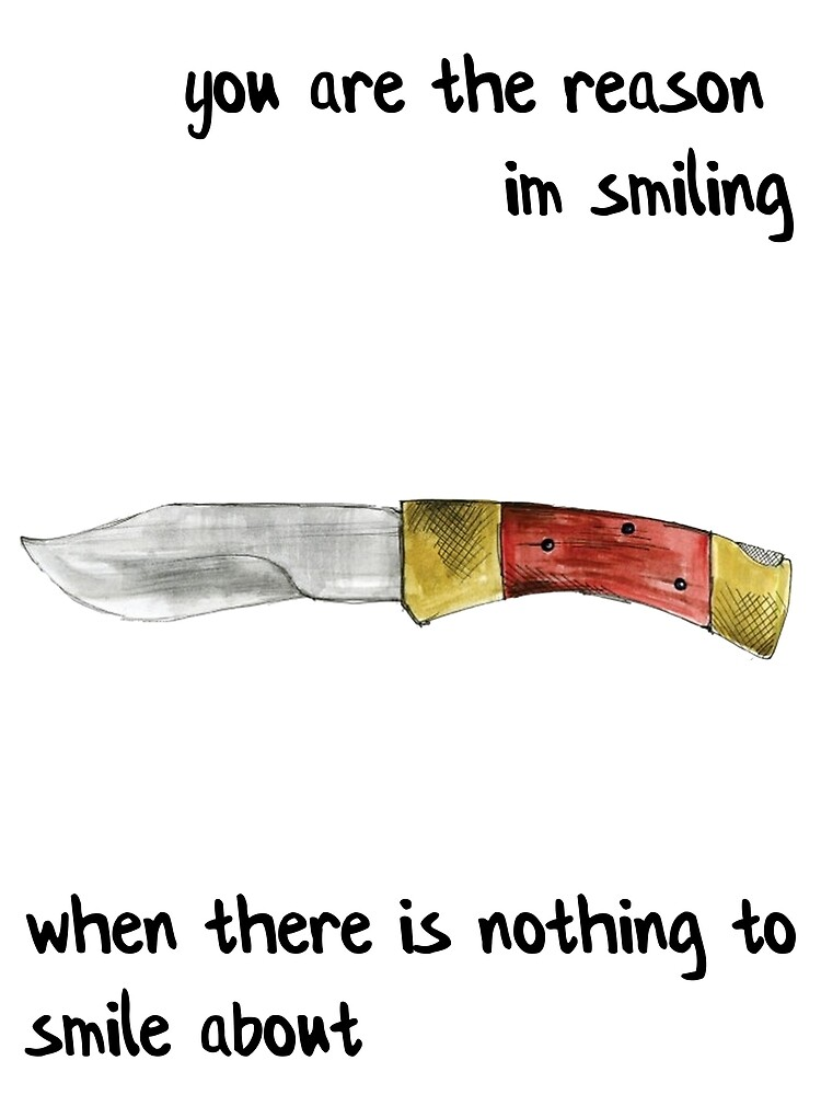 the front bottoms - nothing to smile about by Reilly g