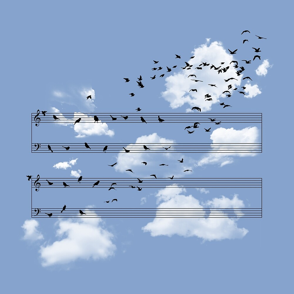 The Musical Notes by Sokol Selmani