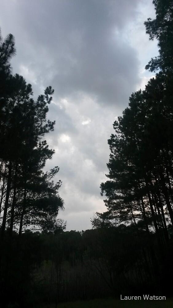Split in the trees by Lauren Watson