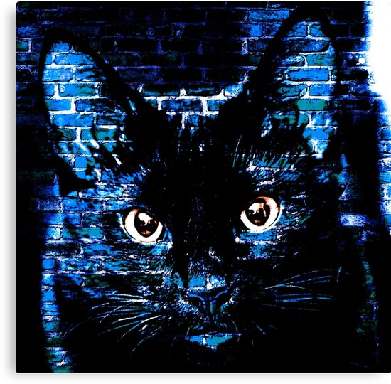 Ally Cat Black by sandywv